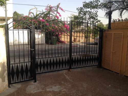 שערים דקורטיביים: תמונה מס' 148